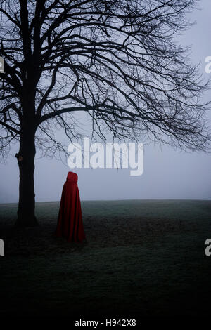 Cloaked figure in the foggy field - Stock Photo