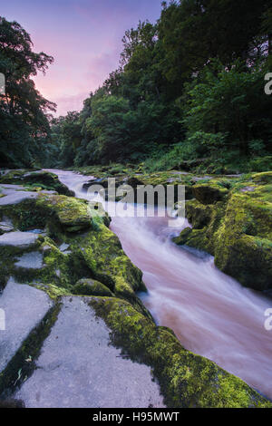 At sunset, the River Wharfe flows through The Strid (a narrow, rocky gap) on the Bolton Abbey Estate, Yorkshire - Stock Photo