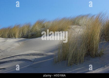 sand dunes II - Stock Photo