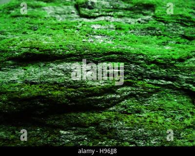 Macro photo of the texture of stone - Stock Photo