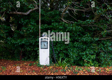 Gas pump from abandoned petrol station, Exbury, New Forest, Hampshire, England UK, - Stock Photo