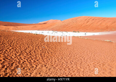 View of Deadvlei in early morning. Deadvlei is a white clay pan located near the more famous salt pan of Sossusvlei - Stock Photo