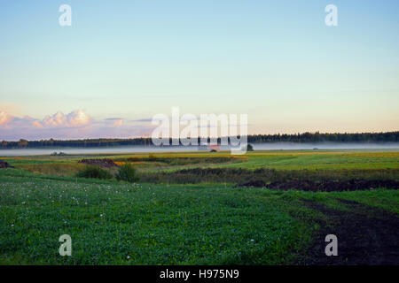 Field just before sunset with haze in Southern Finland - Stock Photo