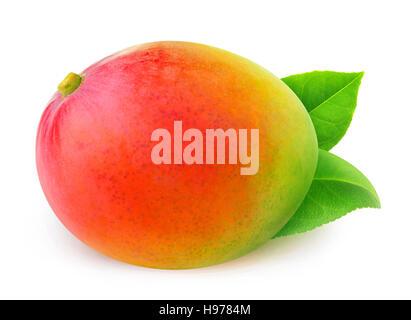 Isolated mango. One whole mango fruit with leaves isolated on white background with clipping path - Stock Photo