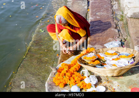 An old woman in colourful sari prepares a puja by the Ganges river in Varanasi, Uttar Pradesh, India, Asia - Stock Photo