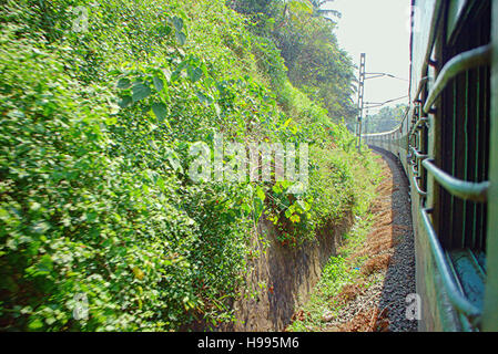 Indian Railways. Railway branch passes through palm forest. Filming trains from window of rear carriage - Stock Photo