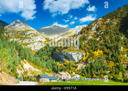 Forest and mountain. - Stock Photo