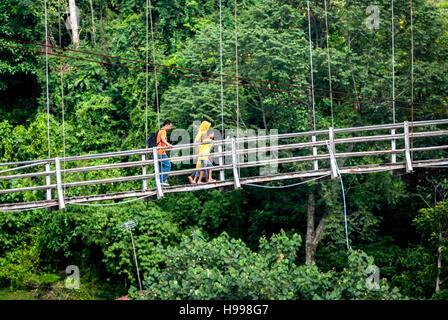 People walking on hanging bridge with rainforest in the background. - Stock Photo