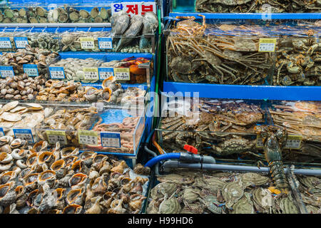 Noryangjin Fisheries Wholesale Market , Expansive wholesale & retail market with stalls offering hundreds of types - Stock Photo