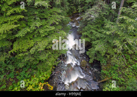 A river of the temperate coastal rain forest, Tongass National Forest, Alaska, USA - Stock Photo