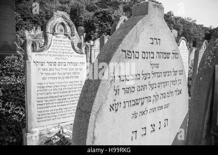 Old Jewish cemetery, Bratislava, Slovakia - Stock Photo