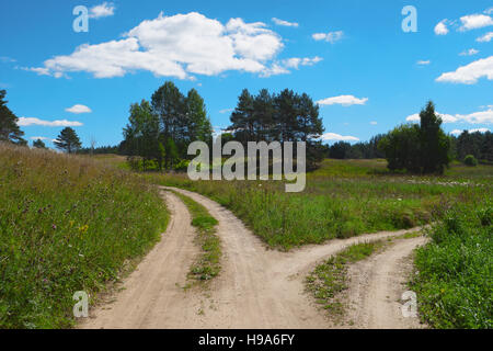 Rural scenic landscape with crossroad on hill in forest. Two different directions. Concept of choose the correct - Stock Photo