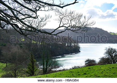 a view looking towards the 'Carrick Roads' on the river Fal in Cornwall, England, UK - Stock Photo