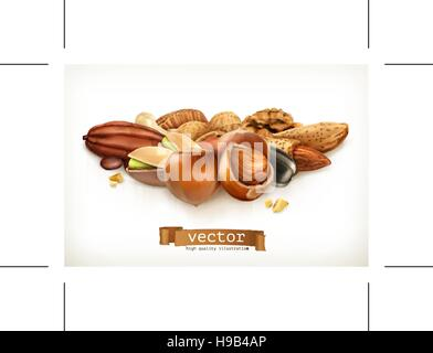 Nuts, vector illustration isolated on white - Stock Photo
