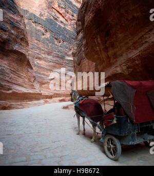 Horse carriage rides through the Siq canyon in Petra, Jordan - Stock Photo