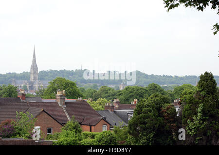 Salisbury Cathedral viewed across rooftops. - Stock Photo