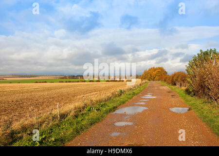 A wet limestone farm track with puddles in the scenic patchwork landscape of the Yorkshire wolds in autumn. - Stock Photo