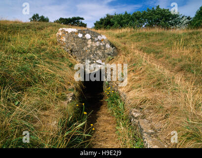 Narrow forecourt & entrance at E end of Uley Long Barrow (Hetty Pegler's Tump), Gloucestershire, a Neolithic Cotswold - Stock Photo