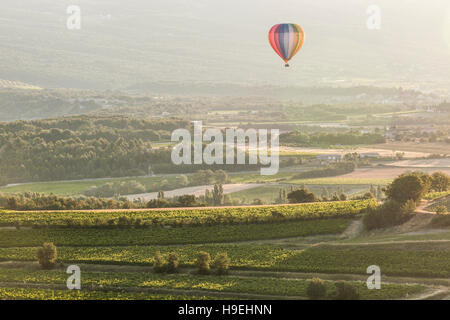 A hot air balloon rises above the vineyards of Provence. - Stock Photo