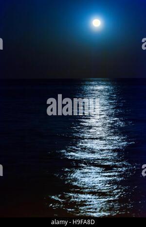 Moonlit Ocean Scene at night - Stock Photo