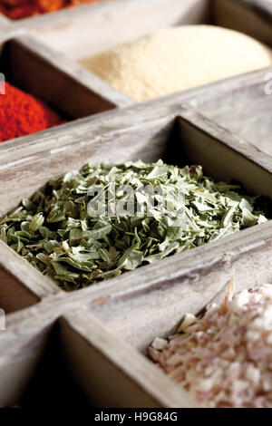 Spices in a case, parsley - Stock Photo