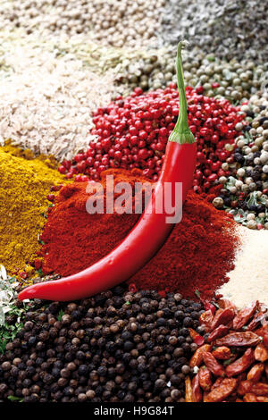 Various spices, peppercorns, bell pepper powder, chili peppers - Stock Photo