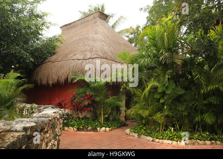 Traditional hut or home made from natural materials & thatched roof, Cozumel,  Yucatan Peninsula, Quintana Roo, - Stock Photo