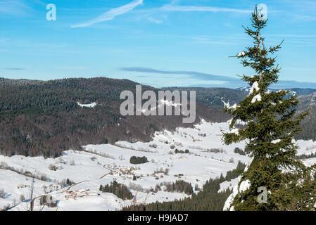 Jura winter landscape, view from Col de la Faucille, Ain, French Jura, France - Stock Photo