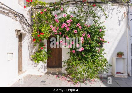 Spain, Balearic Islands, Ibiza, Eivissa, old town Dalt Vila - Stock Photo