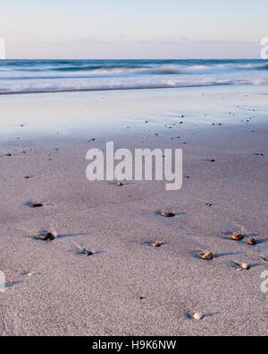 Kennack Sands, Lizard Peninsula, Cornwall, England, UK - Stock Photo