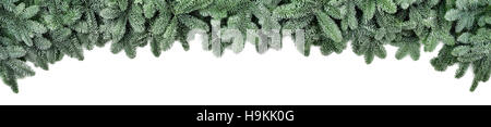 Wide Christmas border arranged with frosted fir branches isolated on white shaped as an arch, banner format - Stock Photo