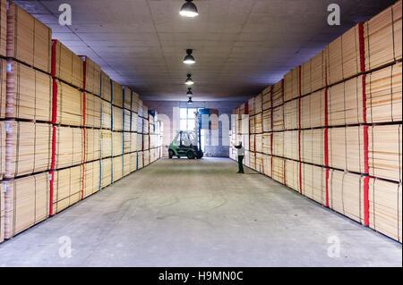 Wood storage warehouse in timber processing plant, Templin, Uckermark district of Brandenurg, Germany.