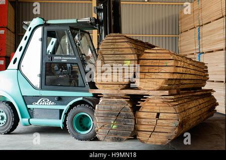 Wood storage in timber processing plant, Templin, Uckermark district of Brandenurg, Germany.