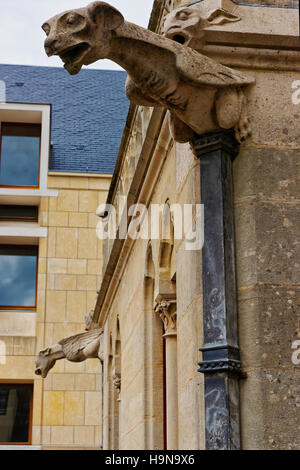 Gargoyle at Amiens Cathedral of Notre Dame in Hotte-de-France region, Picardy, France - Stock Photo