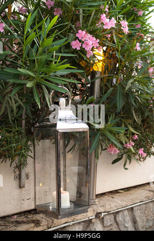 lantern with burning candle in a garden with plants and flowers - Stock Photo