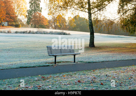 Scene of Frost Covered Empty Park Bench in Autumn - Stock Photo