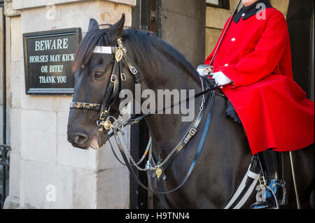LONDON - OCTOBER 31, 2016: Mounted Queen's Life Guard of the Household Cavalry sits on his horse in an archway facing - Stock Photo