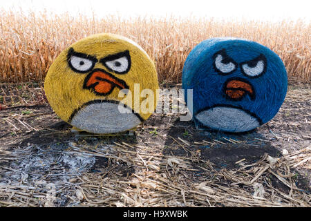 Pair of colorful yellow and blue Angry Birds painted on round farm hay bales at edge of corn field. Underwood Minnesota - Stock Photo
