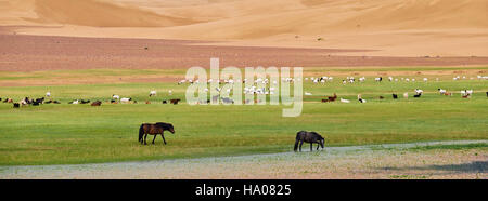 Mongolia, Zavkhan province, Khar Nuur lake, sheep and horse herd - Stock Photo