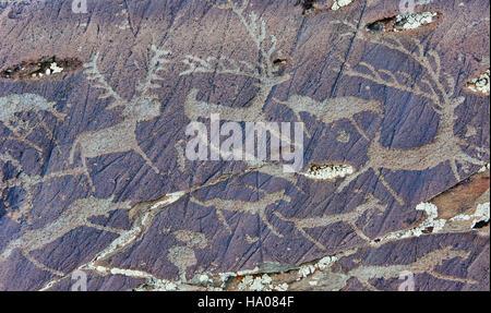 Mongolia, Bayan-Ulgii province, western Mongolia, National Parc of tavan Bogd, petroglyphes in the Mongolian Altai - Stock Photo
