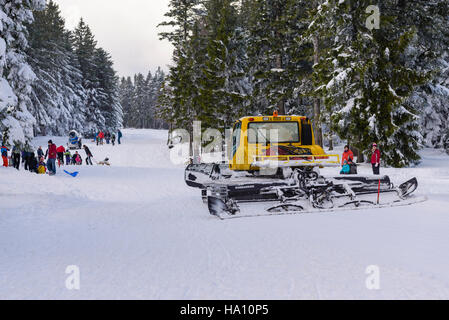 Pohorje, Slovenia - November 13, 2016: Snowcat grooming slope for children with parents sledding and having fun - Stock Photo