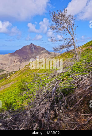 Portugal, Madeira Islands, Landscape of the Porto Santo Island. - Stock Photo