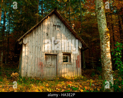 An Old Cabin In The Woods Stock Photo Royalty Free Image