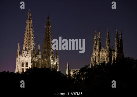 Night view of Burgos cathedral - Stock Photo