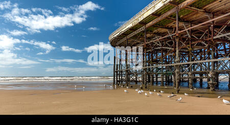 Central pier blackpool - Stock Photo