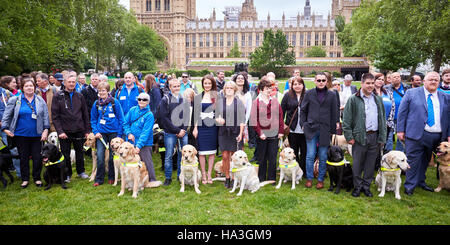 Photocall for Guide Dogs for the Blind next to the Houses of Parliament to highlight the difficulties faced by guide - Stock Photo