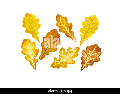 Seven fall colored oak leaves watercolor - Stock Photo