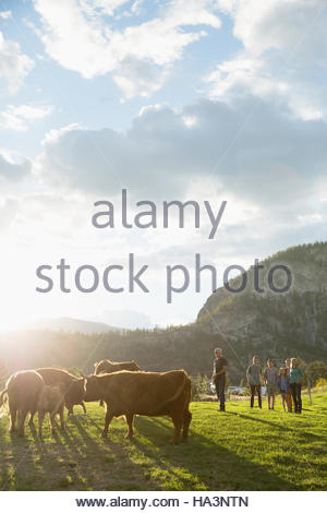 Family in sunny field with cows on rural farm - Stock Photo