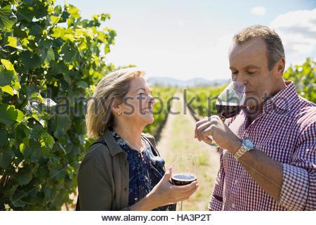 Smiling senior couple wine tasting drinking red wine in sunny vineyard - Stock Photo