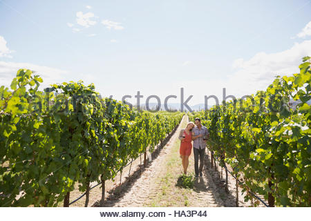 Affectionate couple walking in sunny vineyard - Stock Photo